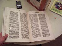 Ismenio's Bibles